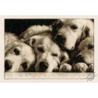 Familia de gossos