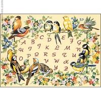 L´alphabet des oiseaux
