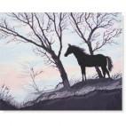 Cavall negre