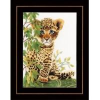 Lleopard cub