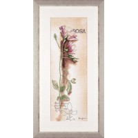 Rosa Botanical